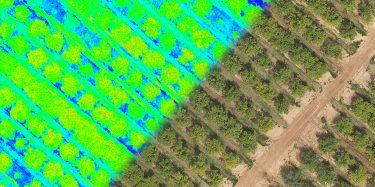 סקרים-לחקלאות-onogtb680f0lznx1fcrwb228mkdhj626r883v7diq6.jpg